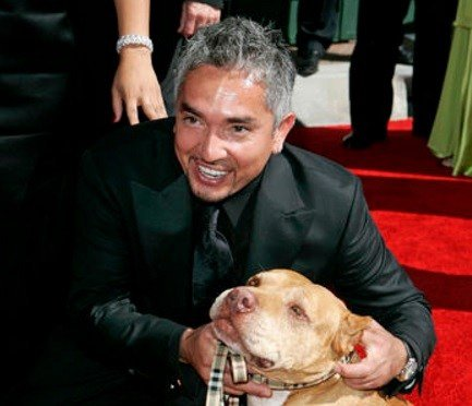 This Aug. 19, 2006 file photo shows television personality and dog psychologist Cesar Milan arrives for the Creative Arts Emmy Awards in Los Angeles.