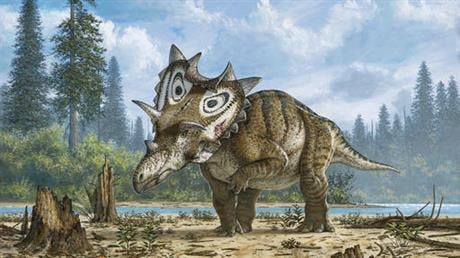 Researchers at the Canadian Museum of Nature announced Wednesday, May 18, 2016, that they've validated the bones found near Winifred, Montana as a new species that lived roughly 76 million years ago. (Mike Skrepnick/Canadian Museum of Nature via AP