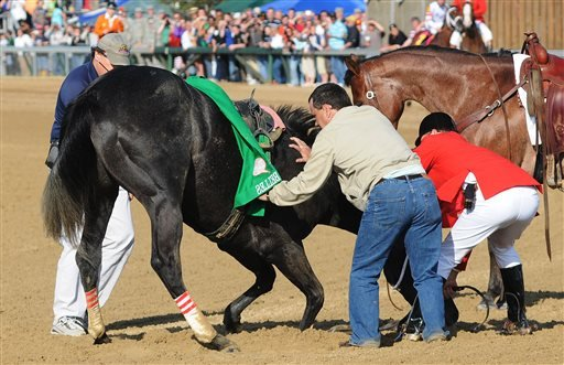 In this May 3, 2008, file phot, track personnel try to hold down Eight Belles after the 134th Kentucky Derby horse race at Churchill Downs in Louisville, Ky.