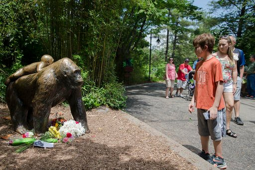 Visitors pass a gorilla statue where flowers have been placed outside the Gorilla World exhibit at the Cincinnati Zoo & Botanical Garden, Sunday, May 29, 2016, in Cincinnati (AP Photo/John Minchillo)
