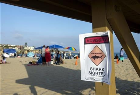 A possible shark sighting at Corona del Mar State Beach closes the shoreline on Sunday, May 29, 2016. Lifeguards shut down the beach on Sunday after a swimmer was pulled injured from the water with bite marks in a possible shark attack, authorities said.(