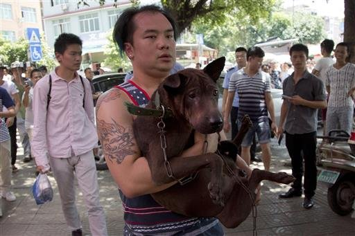A dog lover activist carries a dog which he bought from a dog seller leaves a market during a dog meat festival in Yulin in south China's Guangxi Zhuang Autonomous Region, Tuesday, June 21, 2016.
