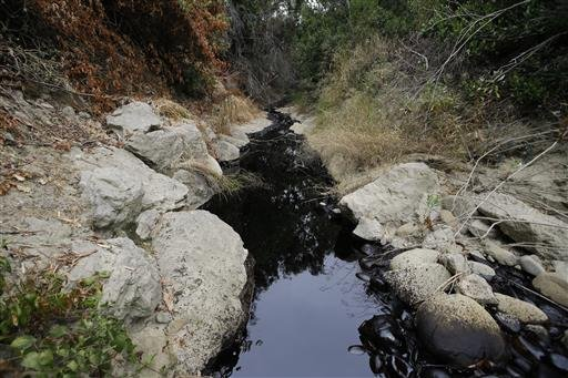 Spilled oil fills a ravine, Thursday, June 23, 2016, in Ventura, Calif. Thousands of gallons of crude oil spilled Thursday from a pipeline and flowed down a ravine in Southern California but did not reach the ocean, officials said. (AP Photo/Jae C. Hong)