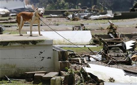 A deluge of 9 inches of rain on parts of West Virginia destroyed or damaged more than 100 homes and knocked out power to tens of thousands of homes and businesses. (AP Photo/Steve Helber)