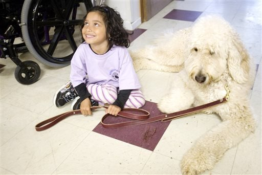In this April 8, 2010 photo, Ehlena Fry, 6, who has cerebral palsy, sits by Wonder, her service dog in Napoleon, Mich. The Supreme Court is taking up an appeal by the Michigan girl who wasn't allowed to bring her service dog to school. The justices said T