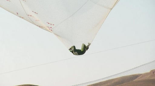 This image made from a video provided by Mondelez International shows Luke Aikins in a net after successfully skydiving without a parachute in Simi Valley, Calif., Saturday, July 30, 2016. After a two-minute freefall, Aikins landed in the 100-by-100-foot