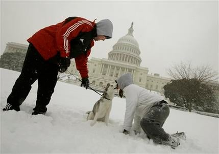 """Tiki"" a Siberian Husky, gets a kiss from Danielle Fiedler, with Ryan Tronovitch, left, as they play in the snow on the west front of the Capitol in Washington, Saturday, Dec. 19, 2009. (AP Photo/Alex Brandon)"