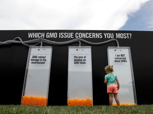 In this Saturday, July 23, 2016, photo, a child views a display that uses orange balls to register people's opinions on GMOs at the Cultivate Festival in Kansas City, Mo. Chipotle's Cultivate festivals encapsulate the food industry's hottest marketing tre