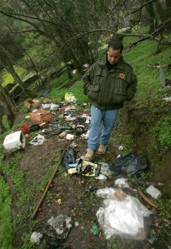 With billions of dollars in drug profits on the line, Mexican traffickers are expanding their foothold in the domestic marijuana market taking over vast swaths of public lands. (AP Photo/Rich Pedroncelli)
