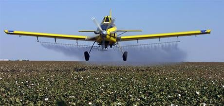 California will tighten rules on how much farmers can use a common pesticide listed by the nation's most productive agricultural state as a chemical known to cause cancer. (AP Photo/Gary Kazanjian, File)
