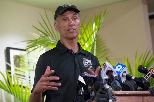 In this May 30, 2016 file photo, Thane Maynard, director of the Cincinnati Zoo & Botanical Garden, speaks during a news conference, in Cincinnati.