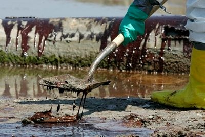 A worker shovels oil from the Deepwater Horizon oil spill off Fourchon Beach in Port Fourchon, La., Monday, May 24, 2010.