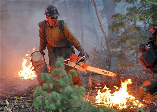 James Honanie, of the Flagstaff Hot Shots, removes fuel from the path of the Schultz Fire Monday, June 21, 2010 in Flagstaff, Ariz. More than 300 firefighters are battling the Northern Arizona blaze. (AP Photo/Matt York)