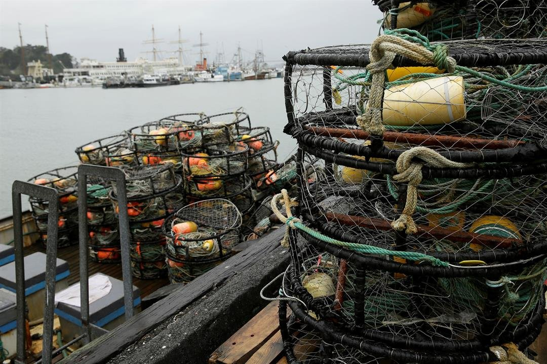 Dungeness crab sit in a bin near a boiler at Fisherman's Wharf Tuesday, Jan. 3, 2017, in San Francisco. Dungeness crab could be harder to come by if fishers from Canada to Northern California continue their strike over the purchase price.AP
