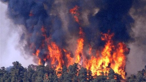 Fire roars through 1,100 acres of mountain wilderness northwest of Los Angeles on Tuesday Aug. 24, 2010 near Lebac, Calif., forcing evacuations as flames threatened dozens of rural homes. (AP Photo/Mike Meadows)
