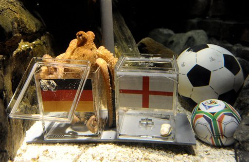 The June 25, 2010 file photo shows Paul the octopus in the Sea Life Aquarium in Oberhausen, Germany, while fishing a shell out of a glass box representing Germany, left. (AP Photo/ddp, Volker Hartmann)