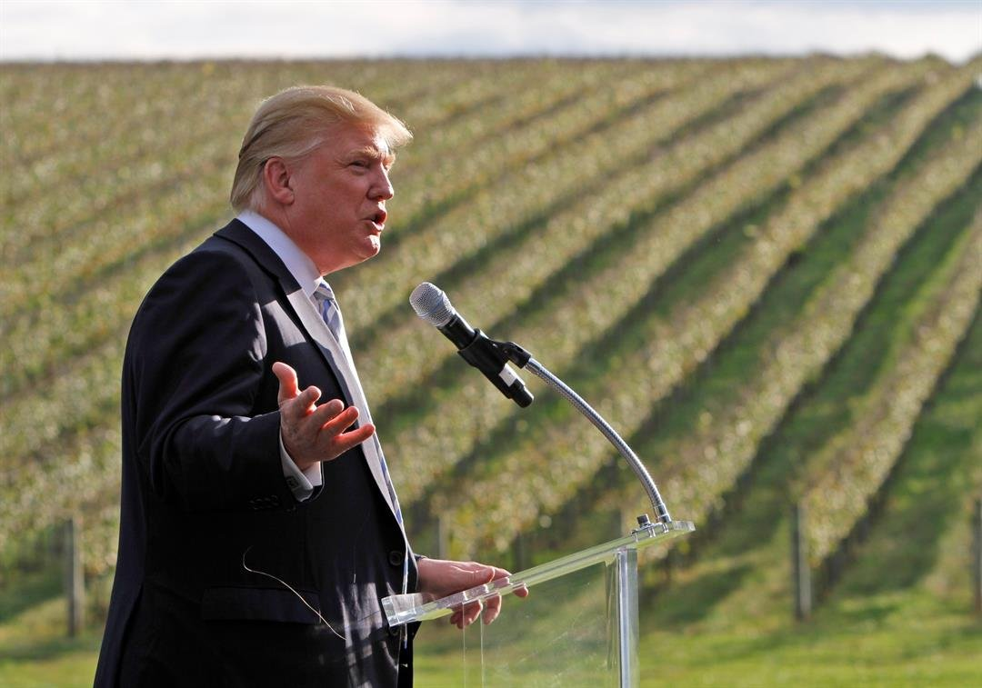 Donald Trump talks in front of rows of grapevines during a news conference at his winery in Charlottesville, Va., Tuesday, Oct. 4, 2011. Trump is marking the opening of his Virginia wine enterprise, which he purchased from former socialite Patricia Kluge