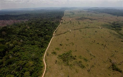 In this Sept. 15, 2009 file photo, a deforested area is seen near Novo Progresso in Brazil's northern state of Para.  (AP Photo/Andre Penner, File)