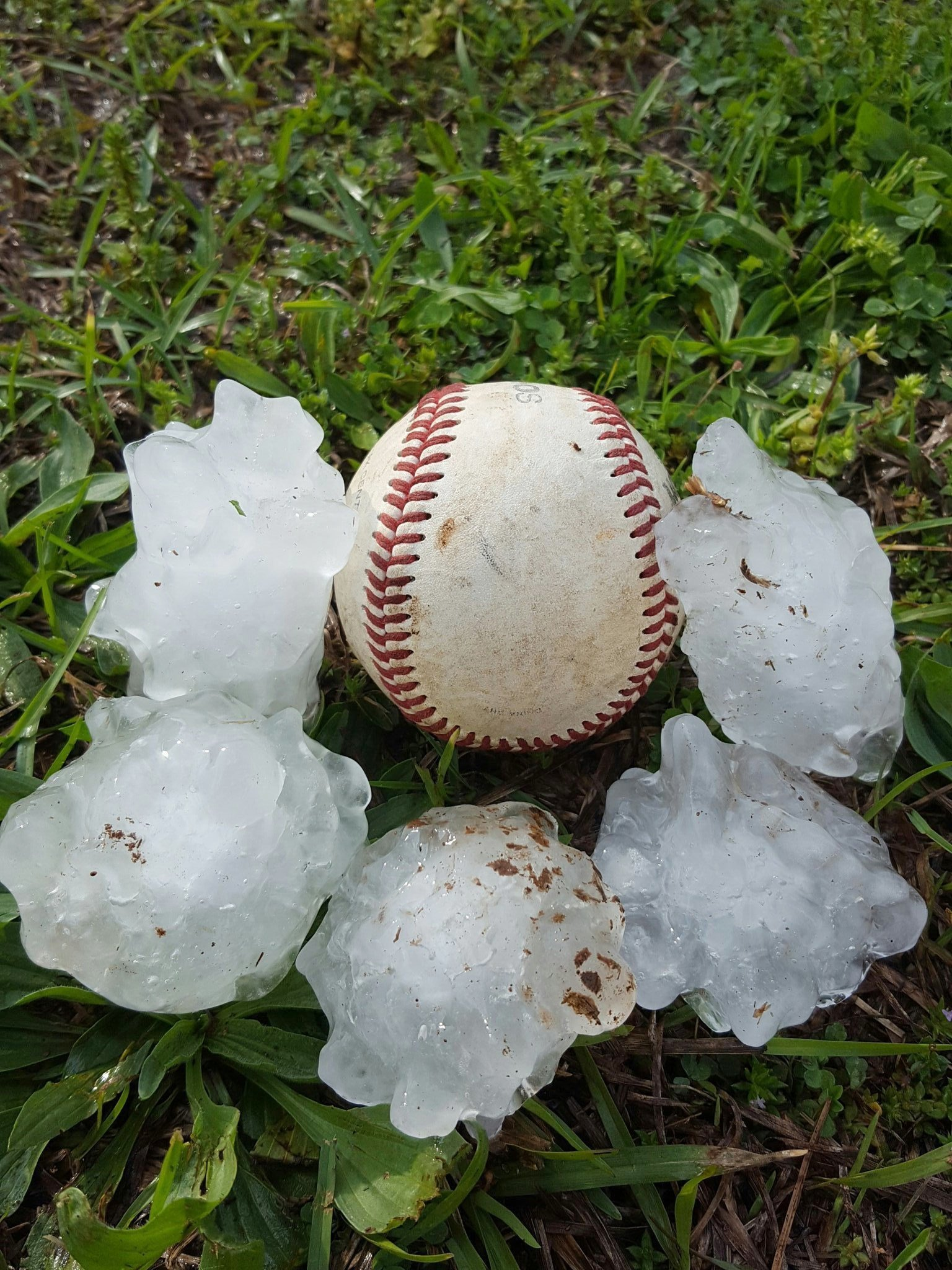 This photo provided by Mitch Sparks shows pieces of hail placed next to a baseball after they fell during a storm in Munford, Ala., Wednesday, April 5, 2017. (Mitch Sparks via AP)