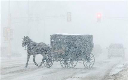 An Amish buggy turns onto U.S. Highway 2 in Fosston, Minn. as a winter storm begins on Wednesday, Nov. 24. (AP Photo/Grand Forks Herald, Eric Hylden)