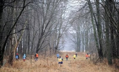 Volunteers and rescuers search for 9-year-old Andrew, 7-year-old Alexander and 5-year-old Tanner Skelton in Morenci, Mich. on Tuesday, Nov. 30, 2010.