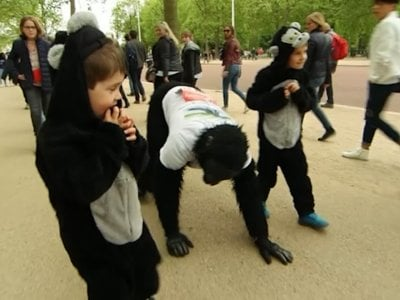 "A man dubbed ""Mr. Gorilla"" crawled his way to the finish line at the London Marathon six days after the race began. He put on his gorilla outfit and entered the race to raise money to protect endangered gorillas in Africa."