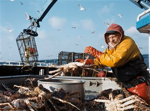 """FILE- In this undated photo provided by the Discovery Channel, Brian Greer sorts Alaskan crabs in an episode of """"Deadliest Catch,"""" the network's hit reality series."""