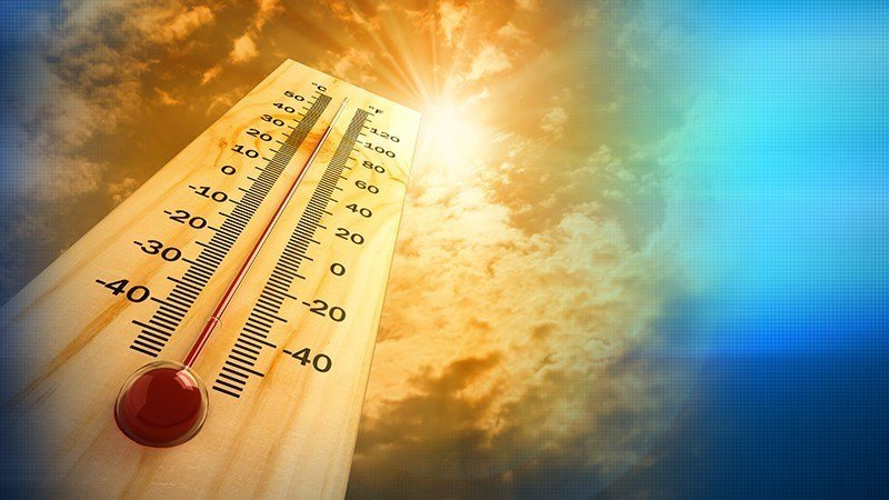 Public asked to cut energy consumption during heat wave