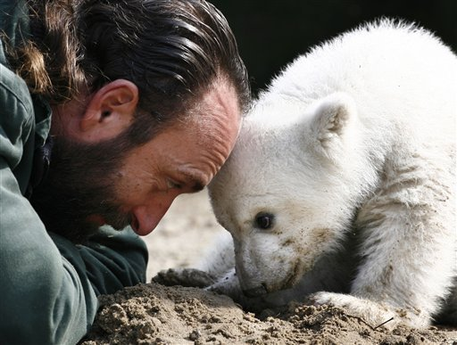 FILE - In this March 23, 2007 file photo, Knut, the polar bear cub, has its first public appearance with his keeper Thomas Doerflein in the Berlin zoo.