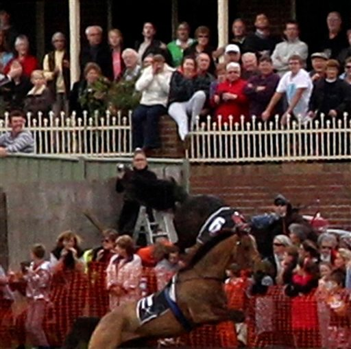 In this May 5, 2011 image provided by Animals Australia, a riderless horse plunges into a crowd of spectators after jumping a fence at the Warrnambool Grand National Steeple Chase at Warrnambool, Australia.