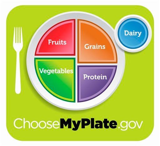 This undated handout image provided by the Agriculture Department shows the department's new healthy eating symbol: My Plate. (AP Photo/Agriculture Department)