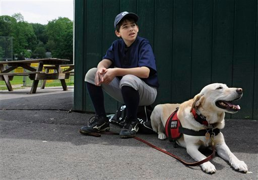 In this Sunday, May 29, 2011 photo, Jeff Glazer waits with his allergy-sniffing dog, Riley, to sweep a ball field before his game in Middlebury, Conn. (AP Photo/Jessica Hill)