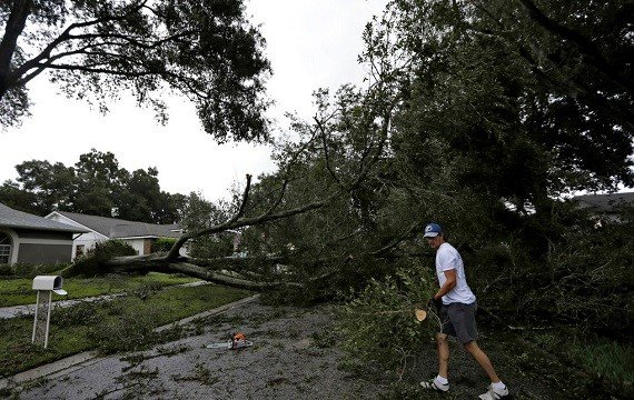 Brian Baker, of Valrico, Fla., cuts up an Oak tree that fell across Falling Leaves Drive after Hurricane Irma
