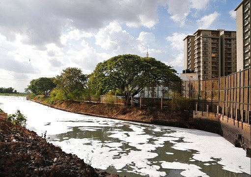 Toxic froth from industrial pollution floats on Bellundur Lake on World Environment Day, in Bangalore, India.
