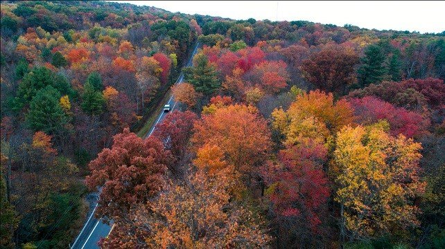 Photo show fall colors beginning to show along Route 209 in Reilly Township, Schuylkill County, Pa.
