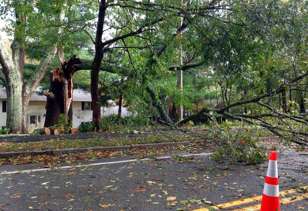 A toppled tree and debris forced a road closure after an overnight storm Monday, Oct. 30, 2017, in Warwick, R.I. (AP Photo/Jennifer McDermott)