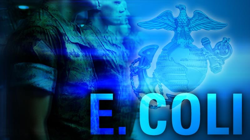 More than 200 Marine recruits sickened by E. coli
