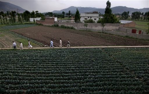 FILE - In this May 5, 2011 file photo, Pakistani men walk through a path in a field next to the house where al-Qaeda leader Osama bin Laden was caught and killed in Abbottabad, Pakistan.