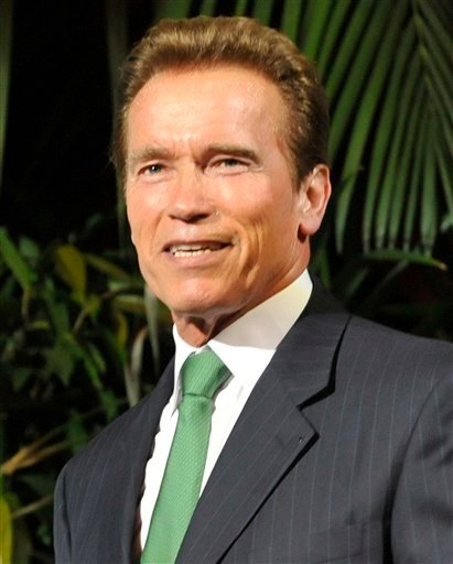 FILE - In this June 21, 2011 file photo, former Gov. of California Arnold Schwarzenegger attends the Energy Forum 2011 in Vienna, Austria.