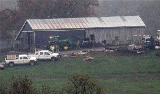Investigators walk around a barn as carcasses lay on the ground at The Muskingum County Animal Farm.