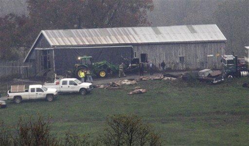 Investigators walk around a barn as carcasses lay on the ground at The Muskingum County Animal Farm Oct. 19, 2011, in Zanesville, Ohio. (AP Photo/Tony Dejak)