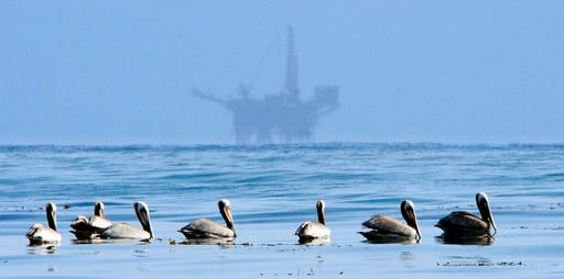 FILE - In this May 13, 2010 file photo, pelicans float on the water with an offshore oil platform in the background in the Santa Barbara Channel off the coast of Santa Barbara, Calif. (AP Photo/Mark J. Terrill, File)