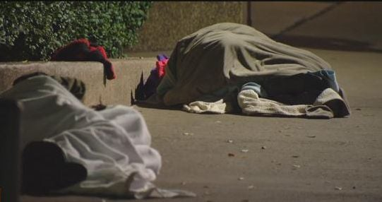 Non-profit volunteers to survey county homeless population