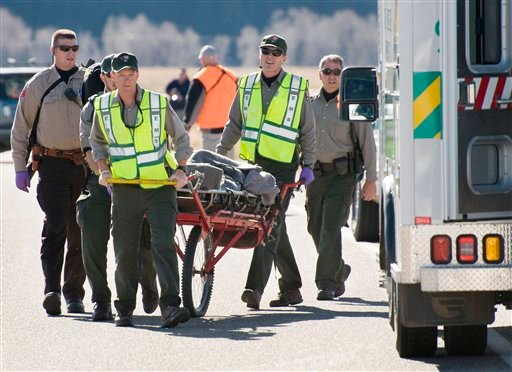 Grand Teton National Park rangers and Teton County Sheriff's deputies use a wheeled litter to transport an elk hunter who was attacked by a bear Sunday, Oct. 30, 2011 in Grand Teton National Park, Wyo.