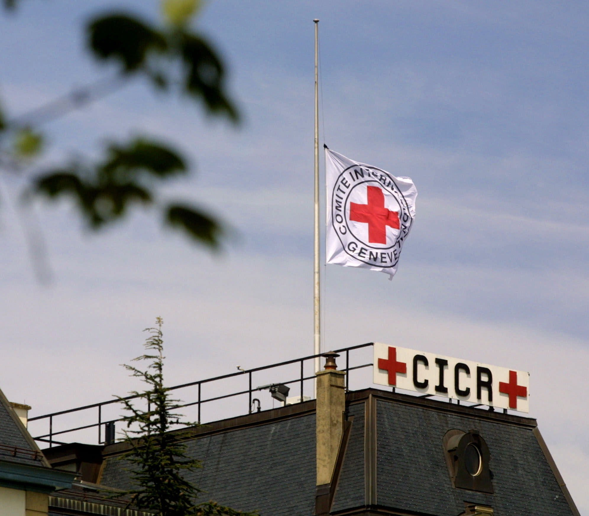 Red Cross says 23 staff left over sexual misconduct since 2015