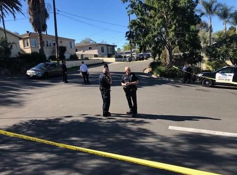 La Mesa cop shoots at 'aggressive' dog