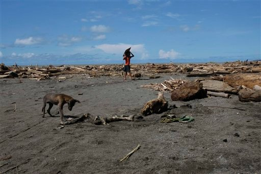 A stray dog approaches a carcass of water buffalo Tuesday Dec. 20, 2011 amidst debris of mostly logs which were washed ashore by the onslaught of Tropical storm Washi last Friday in Iligan city southern Philippines.