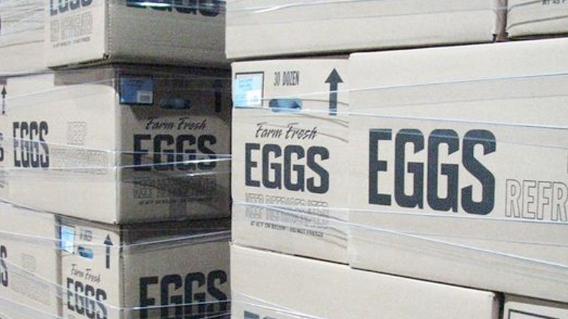 Rodents, filth and poor employee hygiene found at Hyde County egg farm