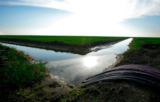 FILE - In this Feb. 25, 2016 file photo, water flows through an irrigation canal to crops near Lemoore, Calif. The Santa Clara Valley Water District board may reverse an earlier decision and grant its full support to Gov. Jerry Brown's controversial plan