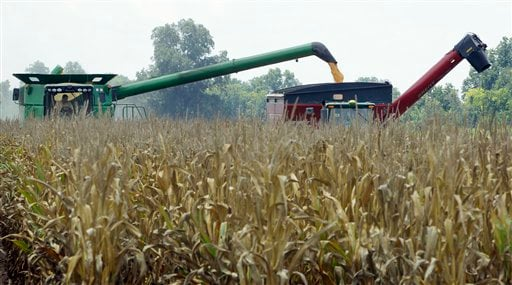 © In this photo taken July 16, 2012, harvested corn is dumped from a combine, left, into a hopper being towed by a tractor near Altheimer, Ark. The U.S. Agriculture Department Friday, Aug. 10, cut its projected U.S. corn production by 17 percent.